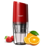 Mini Juicer – Best Choice